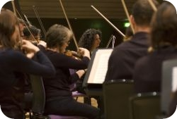 Manchester Camerata String Section