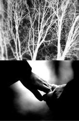 Transfigured Night - still image by Netia Jones